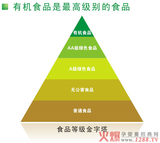 食品金字塔简笔画