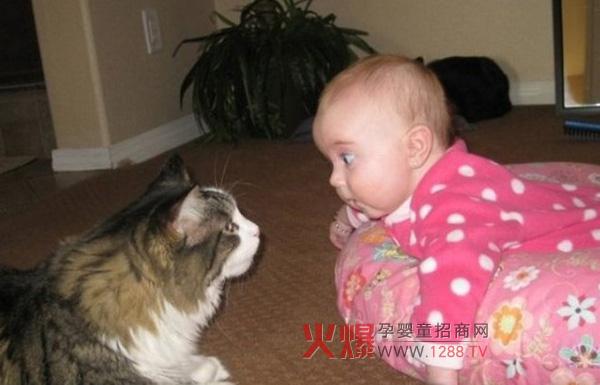 近年来宠物的种类和数量逐渐增多,宠物伤害宝宝的事件也屡见不鲜。由于宝宝自身没有防御机制,当面对宠物的突然伤害难免无法避免。所以妈妈在照顾宝宝的时候,除了防患于未然,还应学会怎样快速应对宠物对宝宝造成的意外伤害,以免被宠物咬伤。  伤情1:宝宝被宠物轻微咬到,但皮肤未破 处理方式:先安抚受惊吓的宝宝,即刻用大量清水冲洗被咬处,然后使用无刺激性或者刺激性较小的肥皂洗净被咬处。如果宝宝还伴有瘙痒等异常情况,应去医院及时就诊。 预防措施:尽量让宝宝与宠物保持一定距离,尤其是带宝宝出门玩耍时更要避开大型宠物。在宝宝