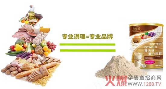 康保聪猴头菇蛋白质粉