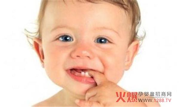 孩子的乳牙与恒牙有哪些区别和联系?