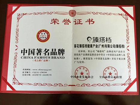 臻搭档荣誉证书