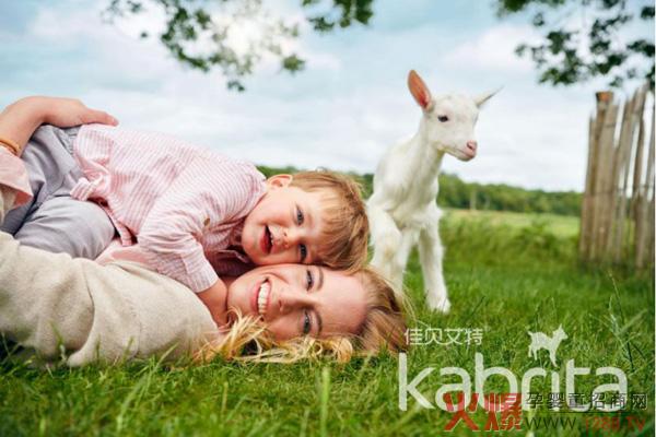 佳贝艾特连续2年份额超6成,领跑羊奶粉市场