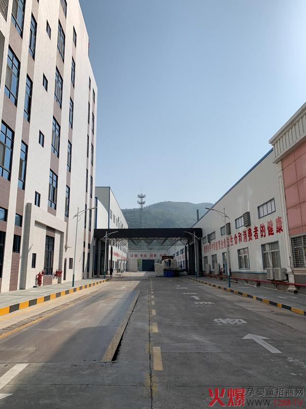 广东亨盛维嘉食品工业有限公司 龙头企业助力乡村振兴