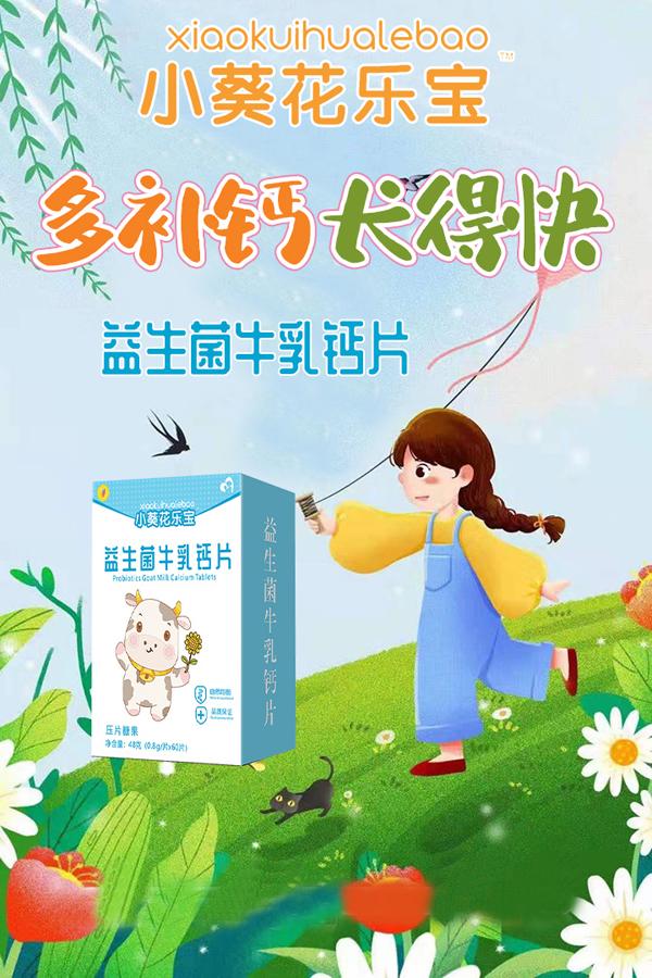 小葵花乐宝益生菌牛乳钙片海报.jpg