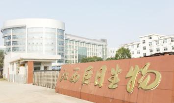 香港(巨日)健康集团股份有限公司