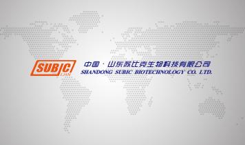 苏比克国际贸易(山东)有限公司
