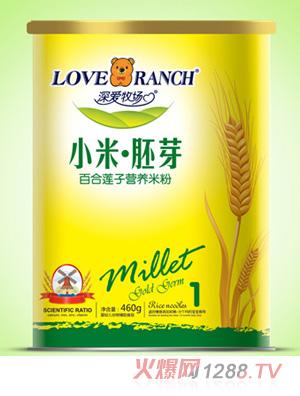 深爱牧场百合莲子小米胚芽米粉纸听1段