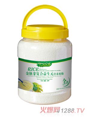 咿呀贝比金胚芽复合益生元营养米粉