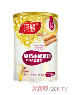 阿颖经典山药DHA益生菌小米米粉