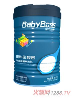 宝贝当家高锌+乳酸菌特殊膳食营养米乳